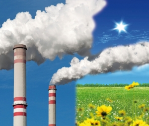 Pollution des sols obligations