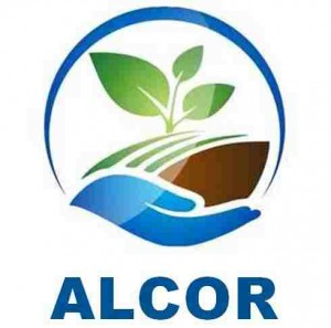 ALCOR Pollution